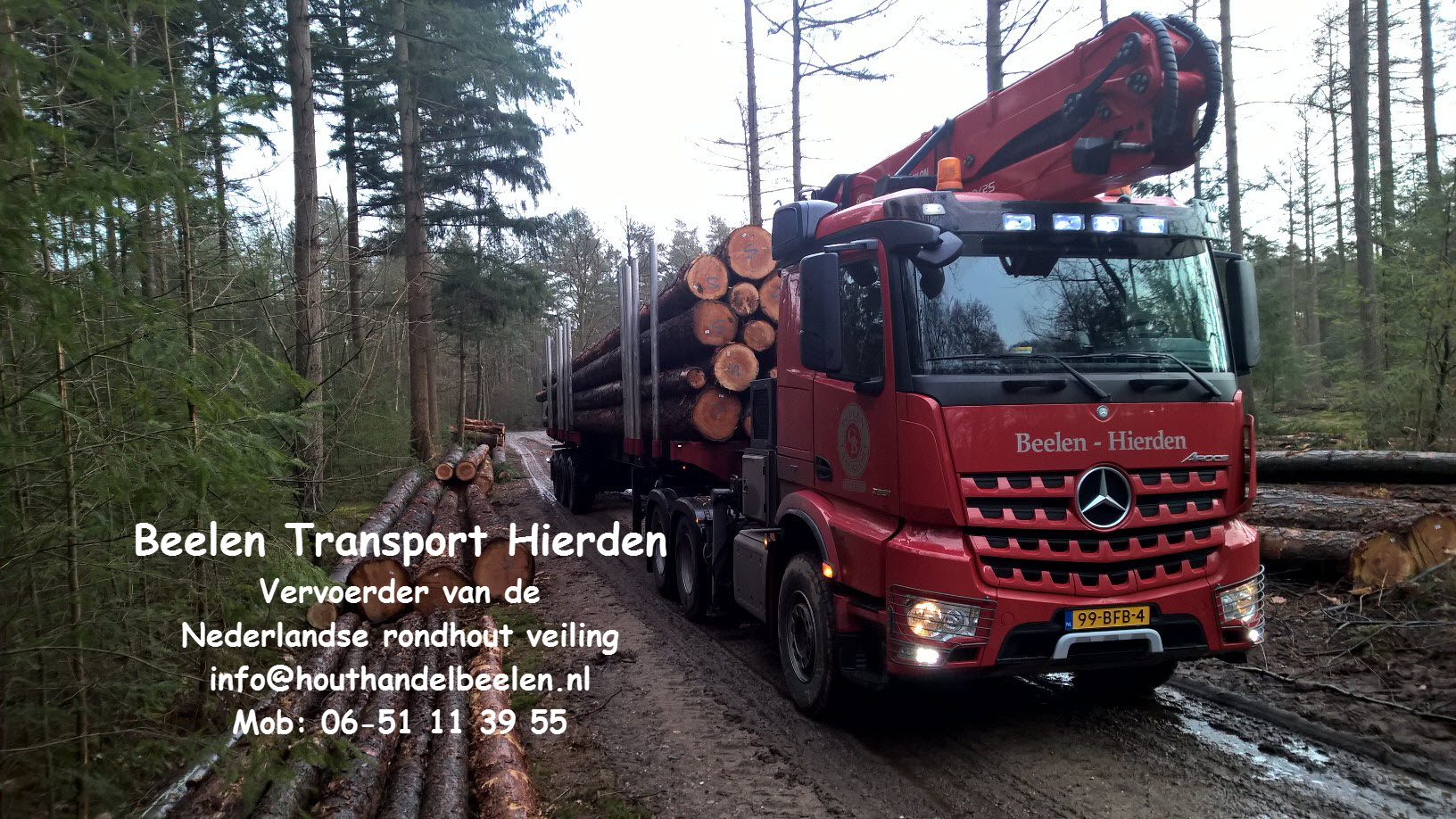 Beelen transport
